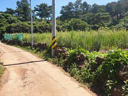 원당봉근교 전원주택지 사진정보