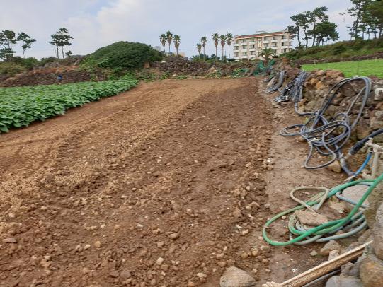한담바닷가근교 농지 사진정보