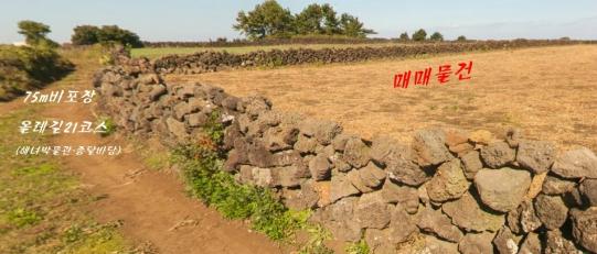하도리 농사짓기 좋은 땅 사진정보