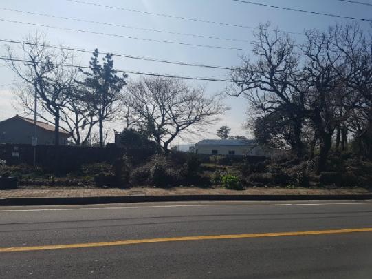 상명리 마을 대도로에 접한 토지 전원주택외 편의점용도추천 사진정보