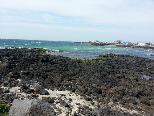 2차선해안도로접한 용도다양한토지 사진정보