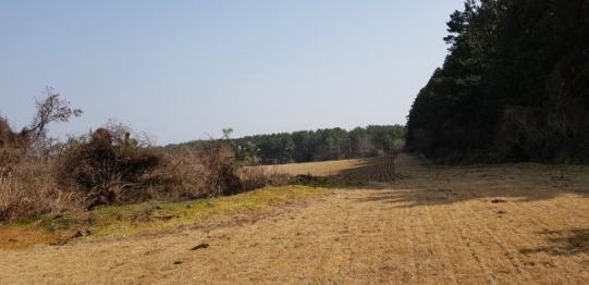오라CC 인근의 토지 사진정보