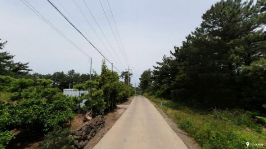 조천 동수동 마을 인근에 있는 임야 사진정보