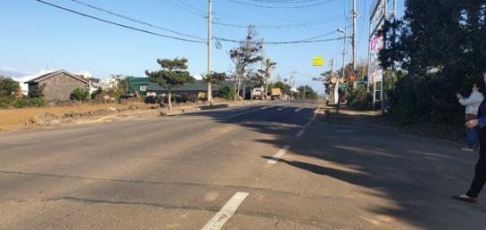 무릉리 2차선 도로에 잘 접해있는 토지 사진정보
