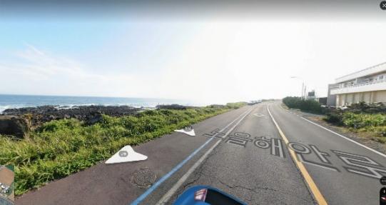 무릉리 해안도로 인근에 위치한 도로에 길게 접해 있는 토지 / 분할이 용이함 사진정보