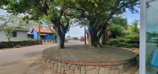 금악리 마을내 땅모양 좋은 전원주택용 토지 사진정보