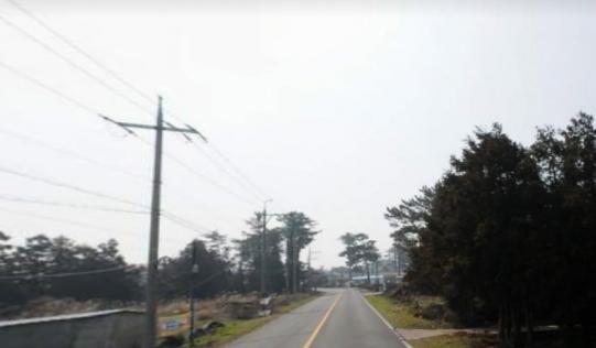애월읍장전리 2차선접 173py 사진정보