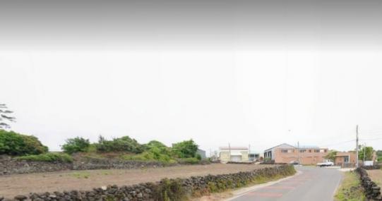 구좌읍 한동리 2차선접 오수유 먼바다뷰 사진정보