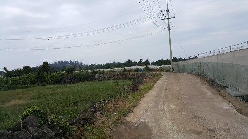 투자용 토지 사진정보
